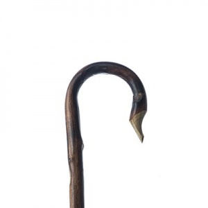 Chestnut Shepherd's Crook
