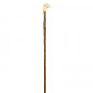Labrador Retriever Handle Hazel Walking Stick